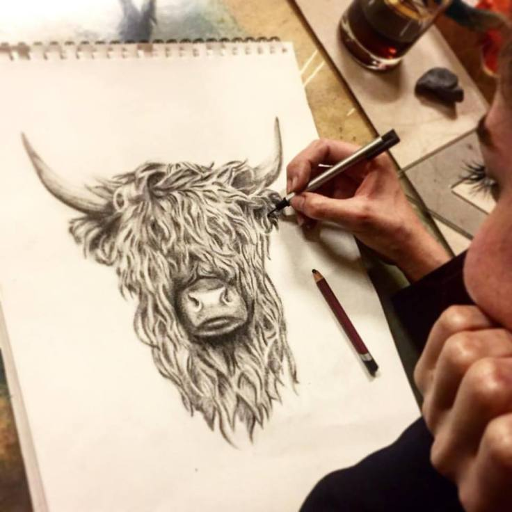 resim-dersi-bull-sketch-soft-pastel-cizim-kurs-guzel-sanatlar-finearts-ferhan-dilek-uluocak